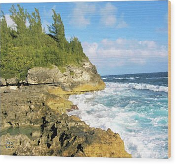 Wood Print featuring the digital art Bermuda Cliff by Richard Stevens