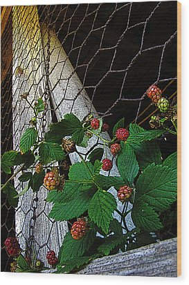 Berries Wood Print by Jessica Brawley
