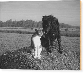 Best Buddies Black And White Wood Print