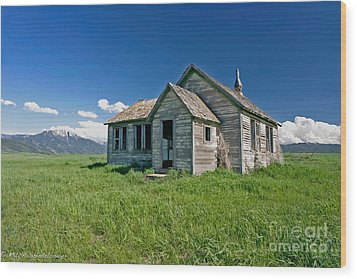 Wood Print featuring the photograph Better Days by Mitch Shindelbower