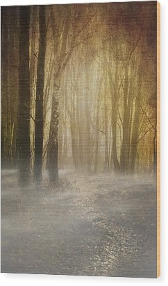 Beware Misty Woodland Path Wood Print by Meirion Matthias