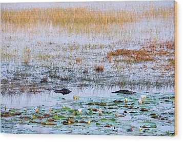 Beware Of Still Waters Wood Print by Jan Amiss Photography