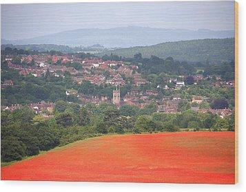Bewdley On Poppy Wood Print