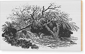 Bewick: Man Drowning Wood Print by Granger