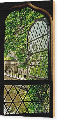 Beyond The Castle Window Wood Print