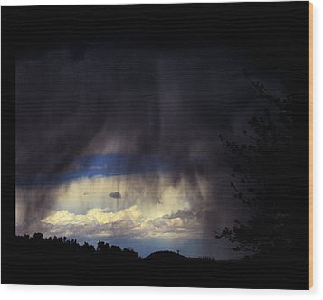 Wood Print featuring the photograph Beyond The Veil by Susanne Still