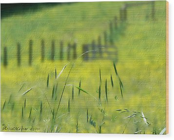 Wood Print featuring the photograph Beyond The Weeds by EricaMaxine  Price