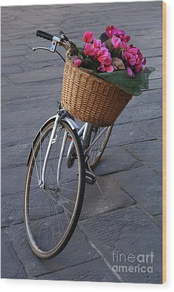 Bicycle In Lucca Italy Wood Print by Bob Christopher