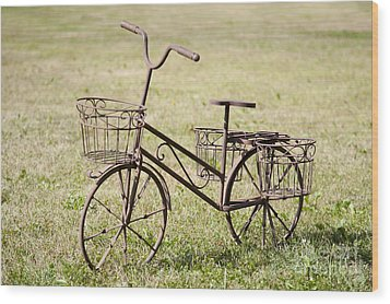Bicycle Lawn Ornament Wood Print by Jaak Nilson