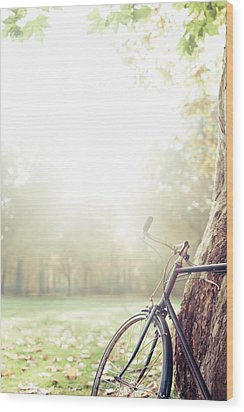 Bicycle Leaned On Big Tree In Sunlight. Wood Print by Guido Mieth