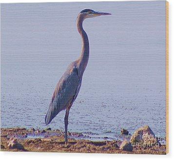 Wood Print featuring the digital art Big Blue Heron At Lake Side by John  Kolenberg