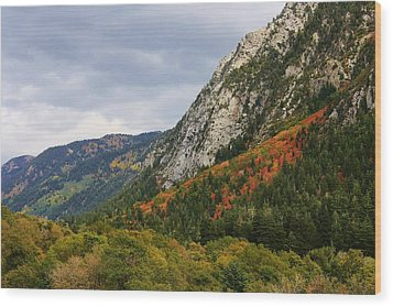 Big Cottonwood Canyon 2 Wood Print by Bruce Bley