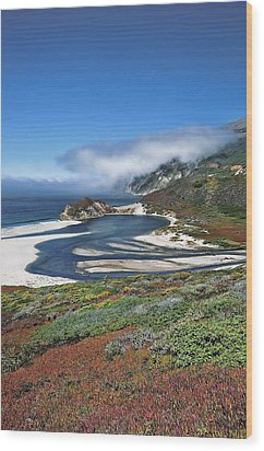Wood Print featuring the photograph Big Sur by Renee Hardison