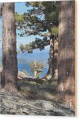 Big Trees Little Tree Wood Print