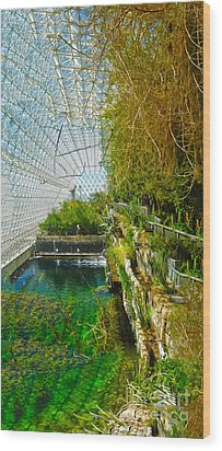 Biosphere2 - Environment 1 Wood Print by Gregory Dyer