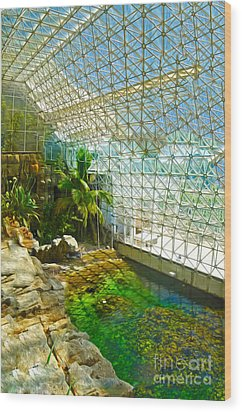 Biosphere2 - Environment 2 Wood Print by Gregory Dyer