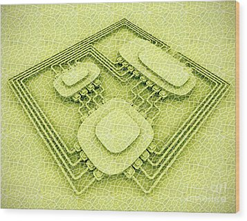 Biotech Wood Print