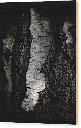 Birch Abstraction Wood Print by Odd Jeppesen