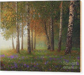 Birch Meadow Wood Print by Robert Foster