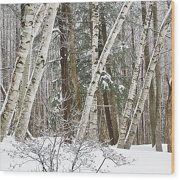 Birches Wood Print by Mary McAvoy