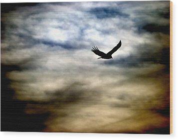 Bird 73 Wood Print by Natasha Bishop