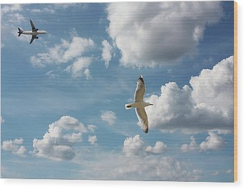 Bird And Flight Agaisnt Sky Wood Print by Fahid Chowdhury