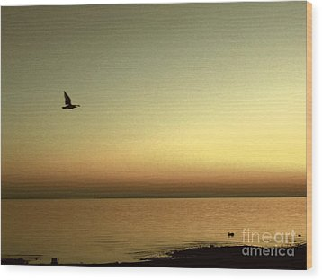 Bird At Sunrise - Sepia Wood Print by Desiree Paquette