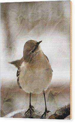 Bird In A Bag Wood Print by Skip Willits
