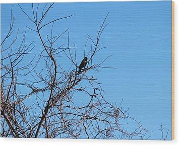 Bird In Tree Wood Print by Rita Tortorelli