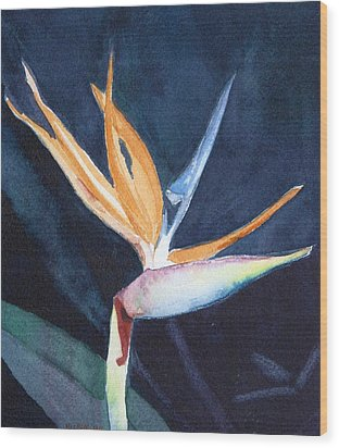 Bird Of Paradise Wood Print by Charlotte Hickcox