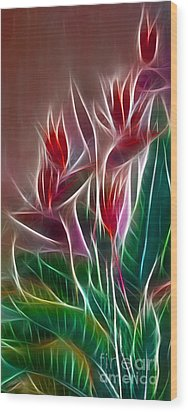 Bird Of Paradise Fractal Wood Print by Peter Piatt