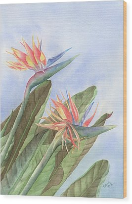 Bird Of Paradise Wood Print by Leona Jones