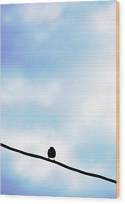 Bird  On A Wire Wood Print by Ed Bricker