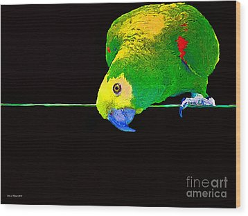 Bird On A Wire Wood Print by Jerry L Barrett