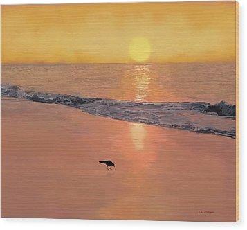 Bird On The Beach Wood Print by Tim Stringer