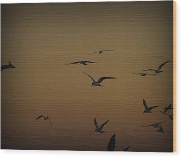 Bird Sky Wood Print by James Granberry