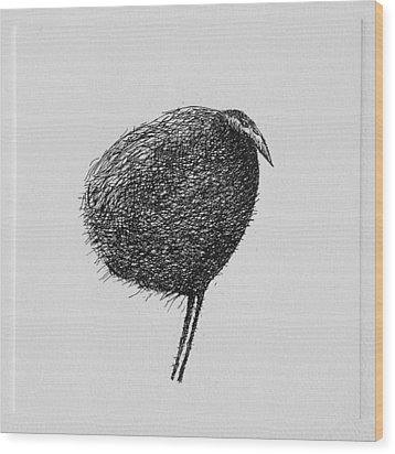 Bird Wood Print by Valdas Misevicius