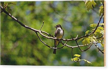 Bird With Worm Wood Print