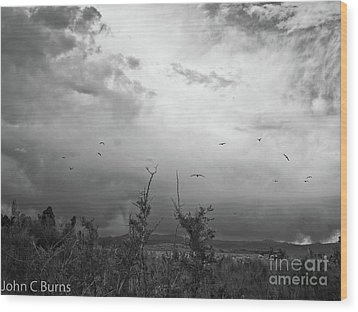 Wood Print featuring the photograph Birds At Mono Lake by John Burns
