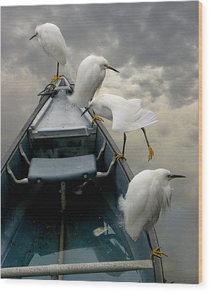 Birds Boat And Beyond Wood Print by Henry Murray