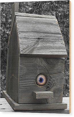 Birds Eye View Wood Print by Kristie  Bonnewell