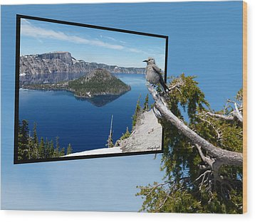 Birds Eye View Of Crater Lake Wood Print by Cindy Wright