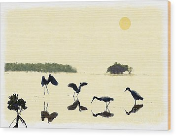 Wood Print featuring the photograph birds feeding in the Everglades by Dan Friend