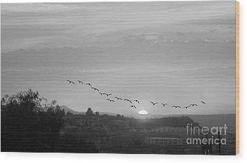 Wood Print featuring the digital art Birds Flying Into The Sunset by John  Kolenberg
