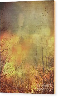 Birds In Flight At Sunset Wood Print by Sandra Cunningham