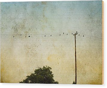 Wood Print featuring the photograph Birds On A Wire by Karen Lynch