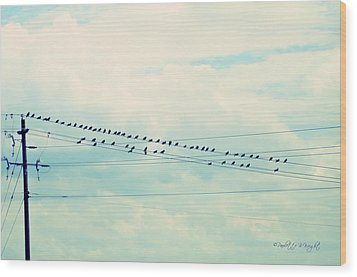 Birds On Wires Blue Tint Wood Print by Paulette B Wright