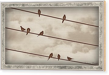 Birds On Wires Wood Print