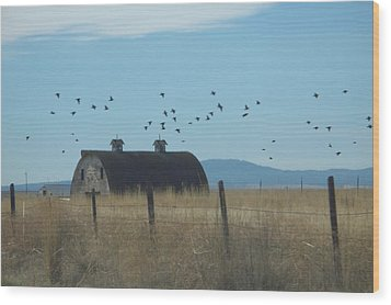 Wood Print featuring the photograph Birds Over Barns by Debbi Saccomanno Chan