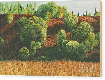 Bits Of Color In Driftwood Canyon Wood Print by Anne Havard